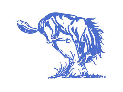 USD 407 Champion Logo